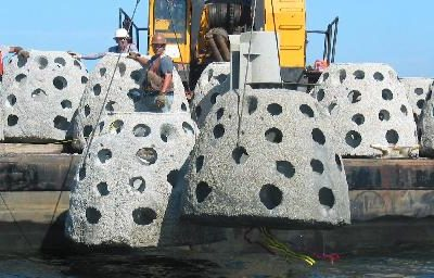 Culverts and Reef Balls Oct/Nov 2009