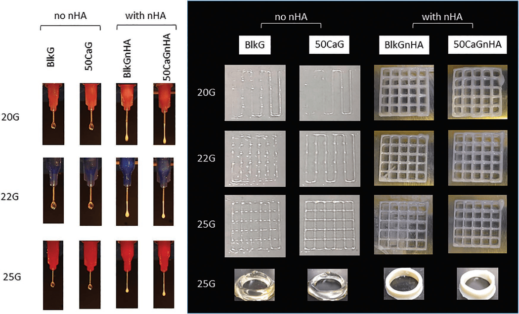 3D Bioprinting with Methacrylated Gelatin Upon Inclusion of Chroride Salt and Nano-Particles