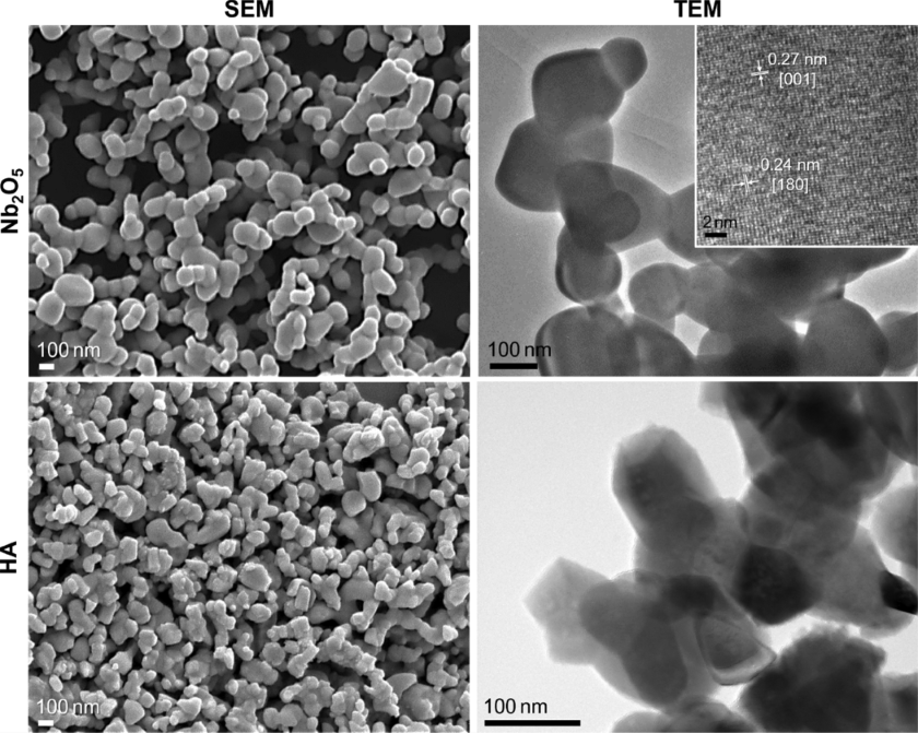 Nb2O5 and HA Particle Loaded Electrospun PCL/GL Membranes for Bone Tissue Engineering