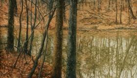 Winter at Pond 3