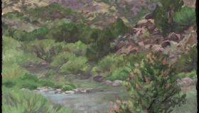Rio Grande 10 [SOLD]