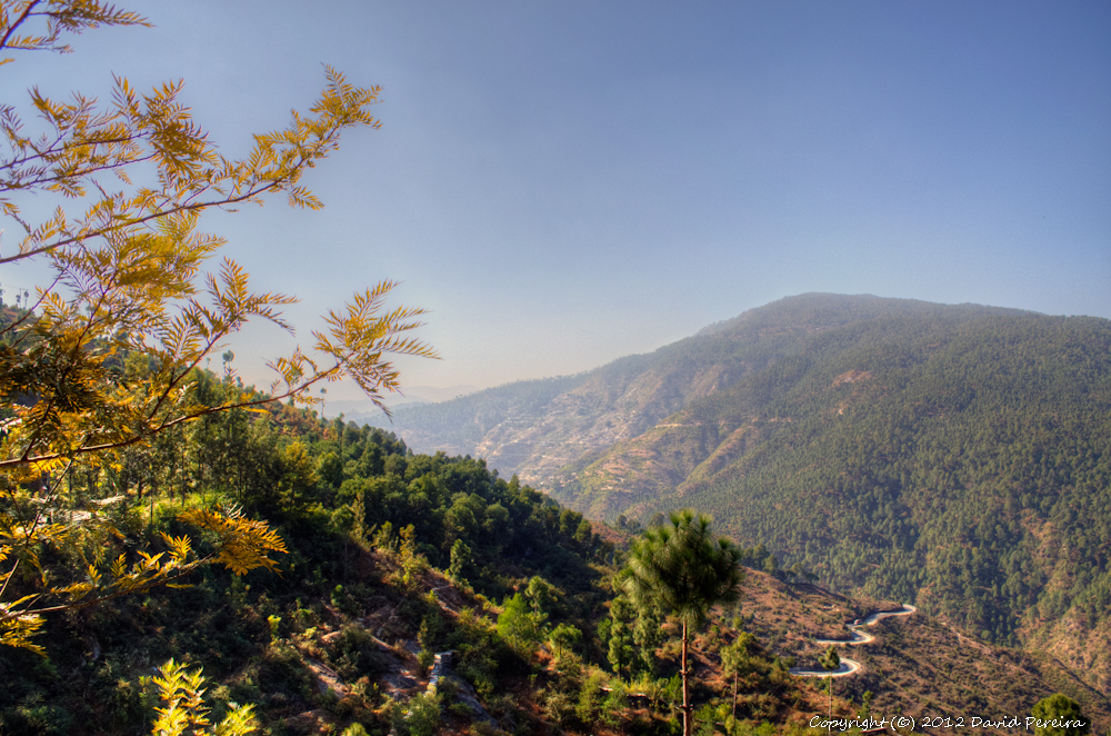 Drive from Nainital to Kausani