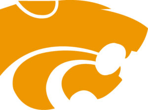 Wildcat Logo Athletic Gold