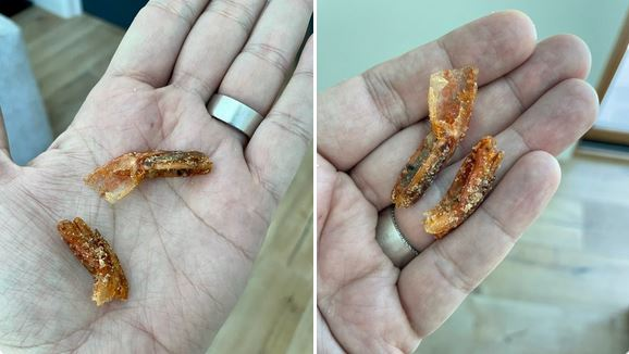 Man Finds Shrimp Tails in Box of Cinnamon Toast Crunch