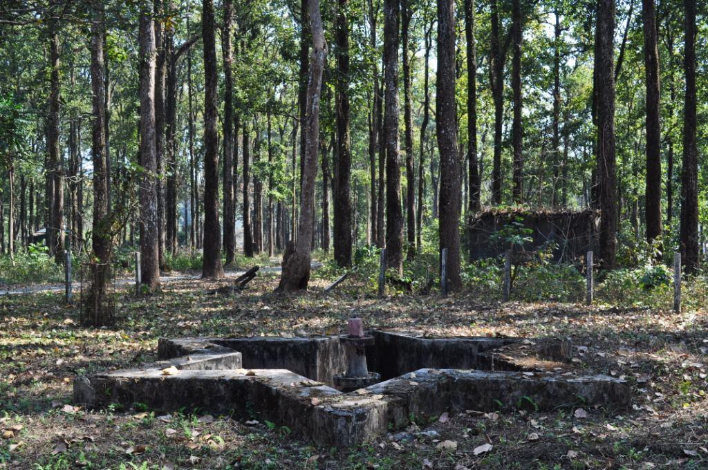 Gorumara