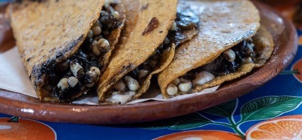 Corn Smut, Mexico's fine dining delicacy
