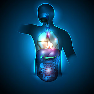 Gastrointestinal (GI) Procedures - Dallas, TX