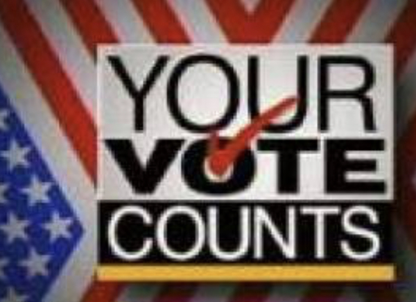 Your Vote Counts !     VIRGINIA PRODAN: THIS ELECTION IS A VOTE BETWEEN CAPITALISM… OR SOCIALISM