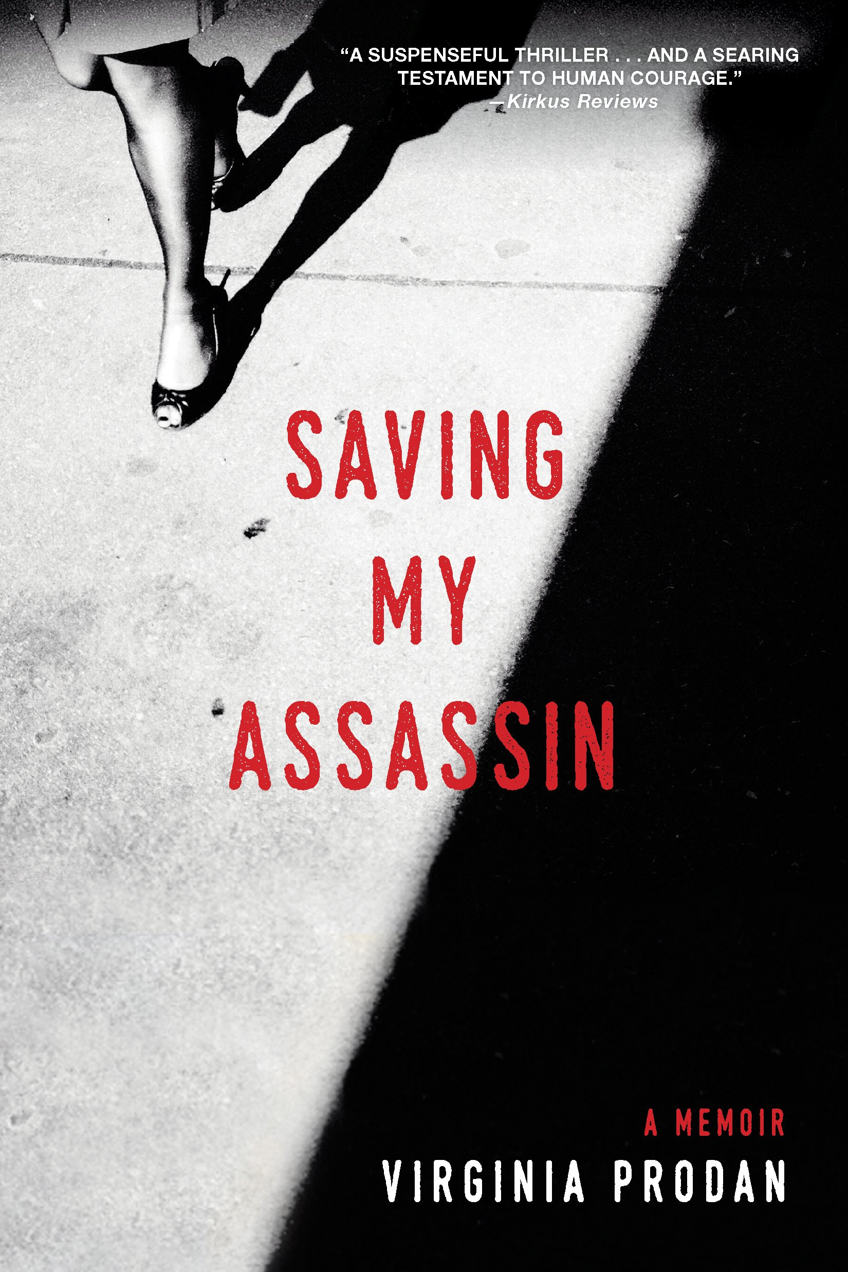 Saving My Assassin Book Cover