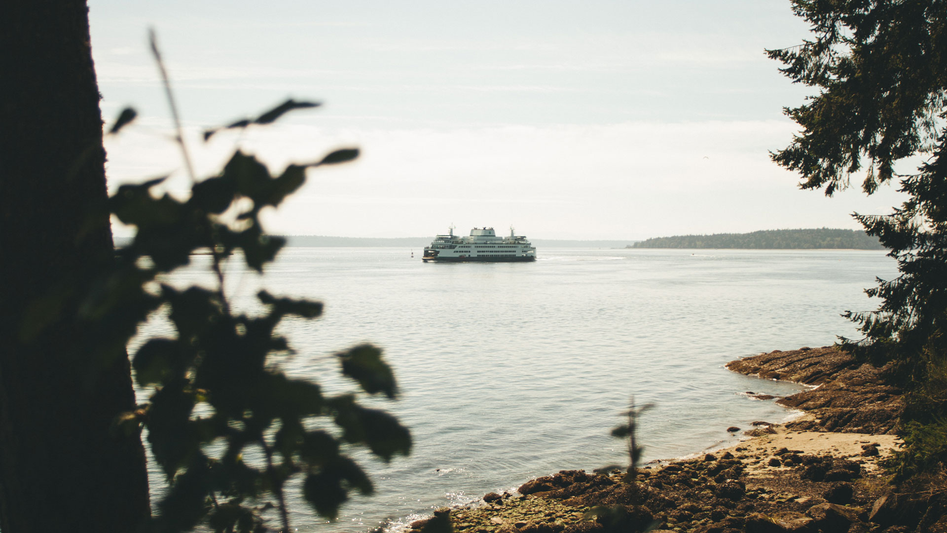 Craven-Media-Ferry-Boat