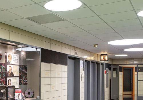 photos-construction-ceilings