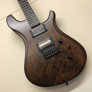 Brubaker B2 Guitar