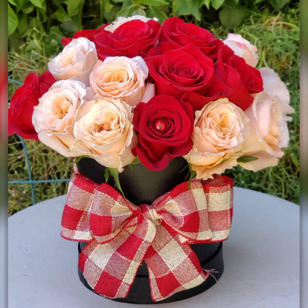 Pink and Red Roses in Round Black Box