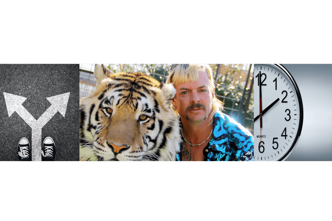 3 Business Lessons Learned From Watching The Tiger King