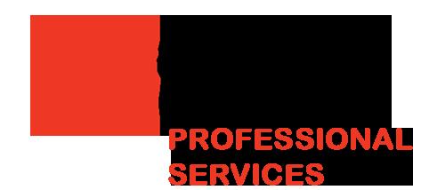 Tekcel-professional_services