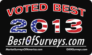 Best of Survey 2013 Icon