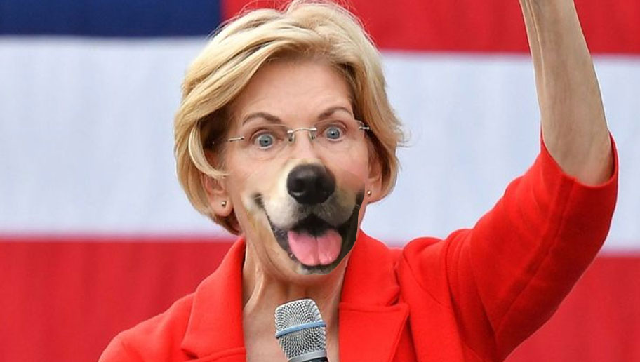 Elizabeth Warren hopes to pick up crucial dog-faced pony soldier vote with facial reconstruction surgery