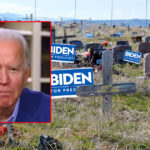 Biden: 'If you don't vote for me, you ain't dead'