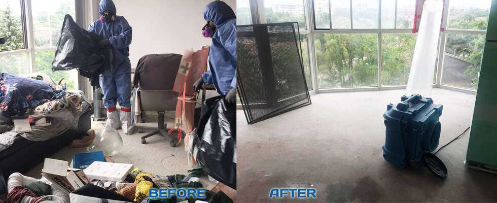 estate cleanout services vaughan