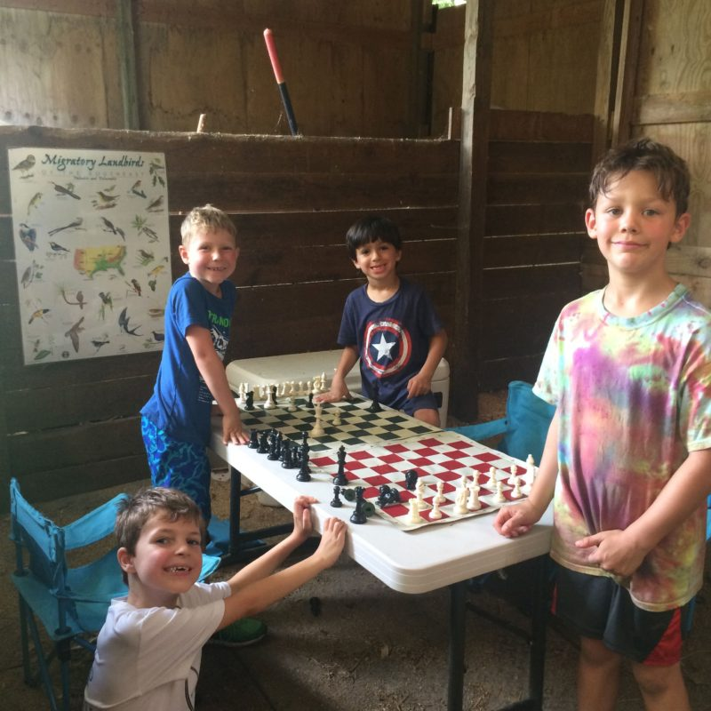 Game Stall: chess & more