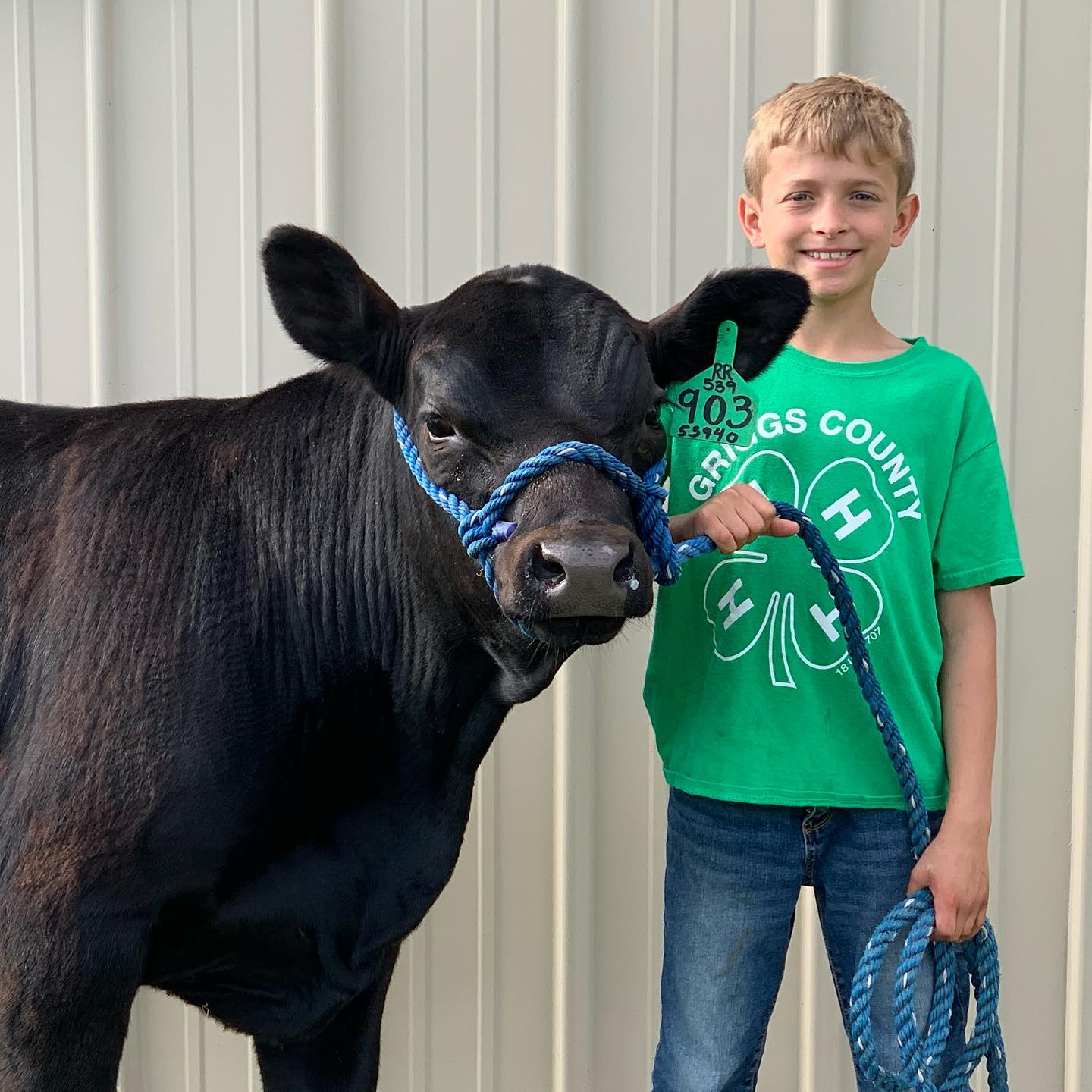 Ressler Angus Ranch - Ready and Reliable to provide you with quality Angus cattle. Located in Eastern North Dakota