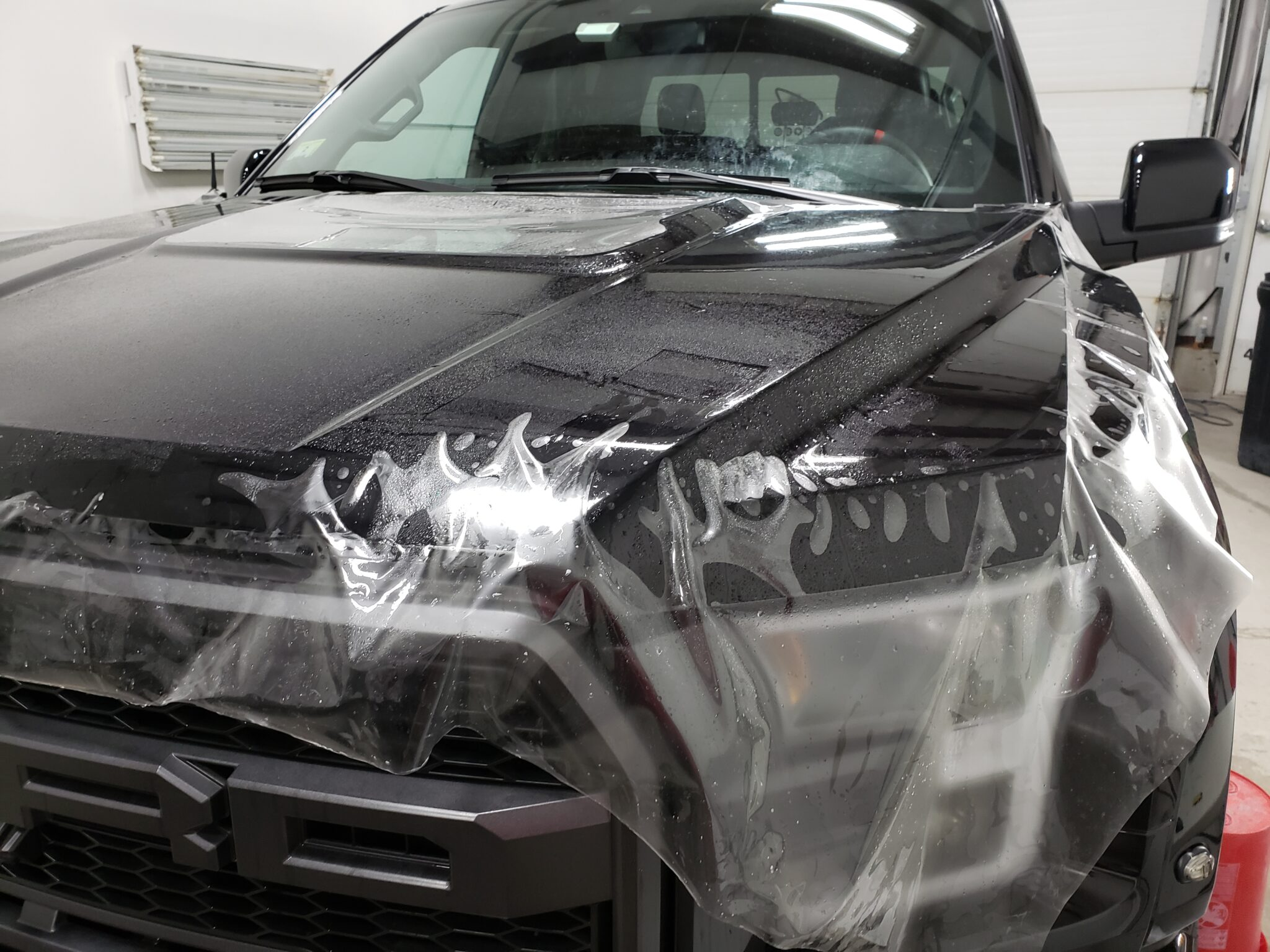 paint protection film and clear bra