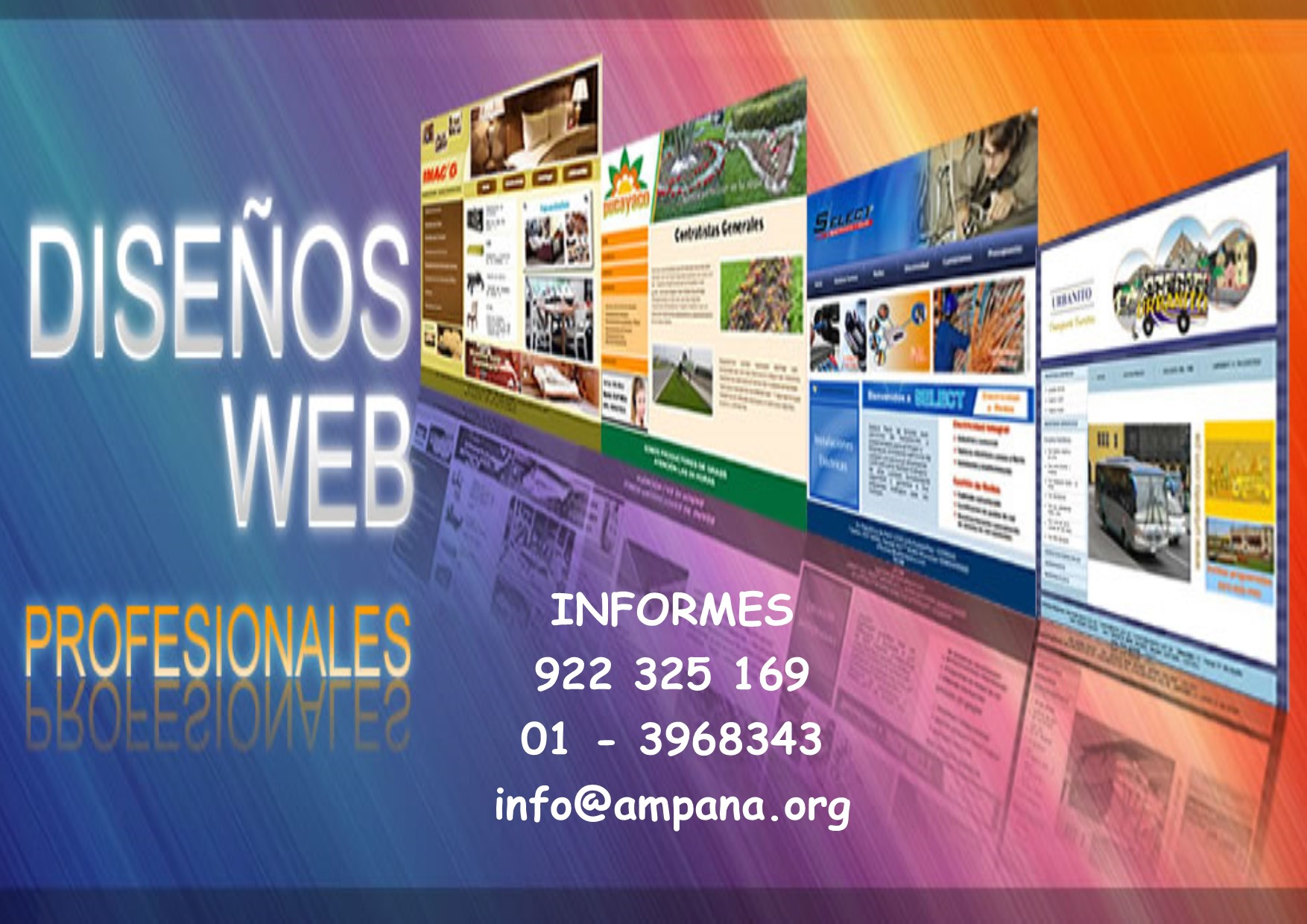 pag.web.profesionales