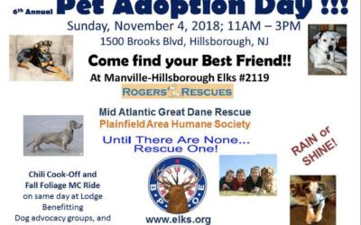 Dog Adoption & Chili Cook Off Sunday, November 4, 2018