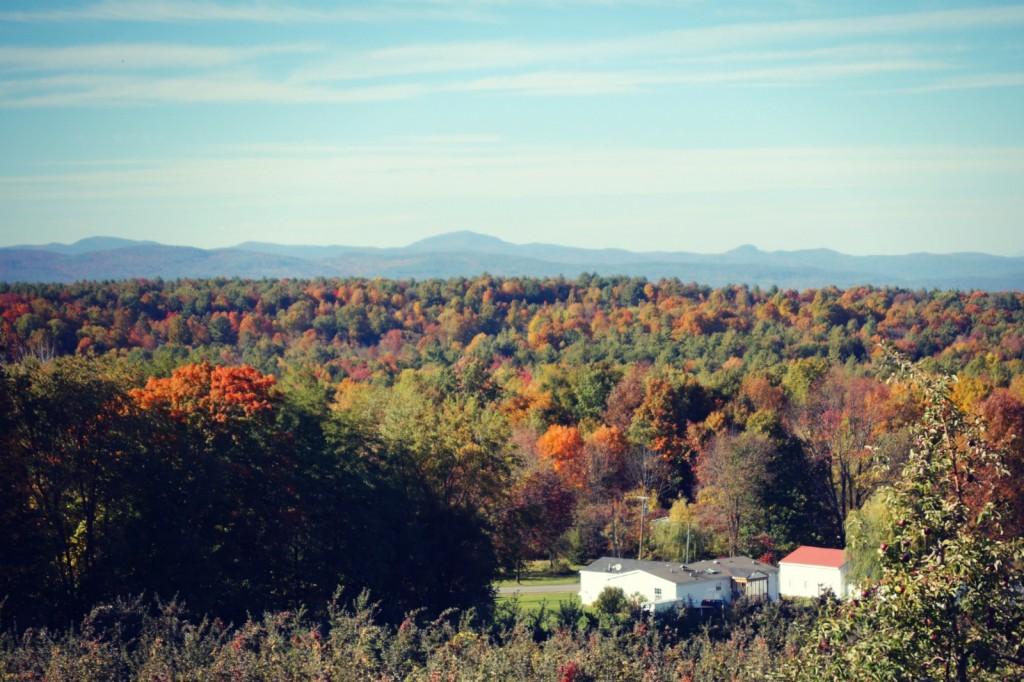 Fall Foliage in Upstate New York