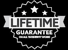 Lifetime Guarantee On All Taxidemy Work