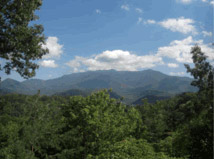 Mt. LeConte - we climbed all the way up!