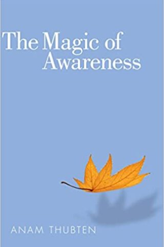 The Magic Of Awareness by Anam Thubten