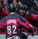 NLL: Mammoth continue win streak at home