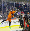 NLL: Wings fall to Wolves at Wells Fargo