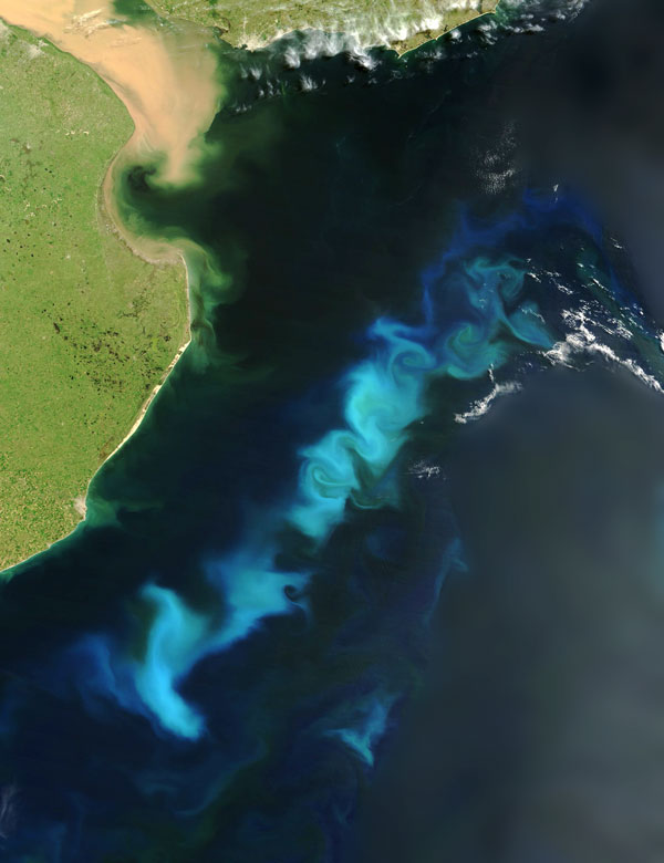 An oceanic phytoplankton bloom in the South Atlantic Ocean, off the coast of Argentina.