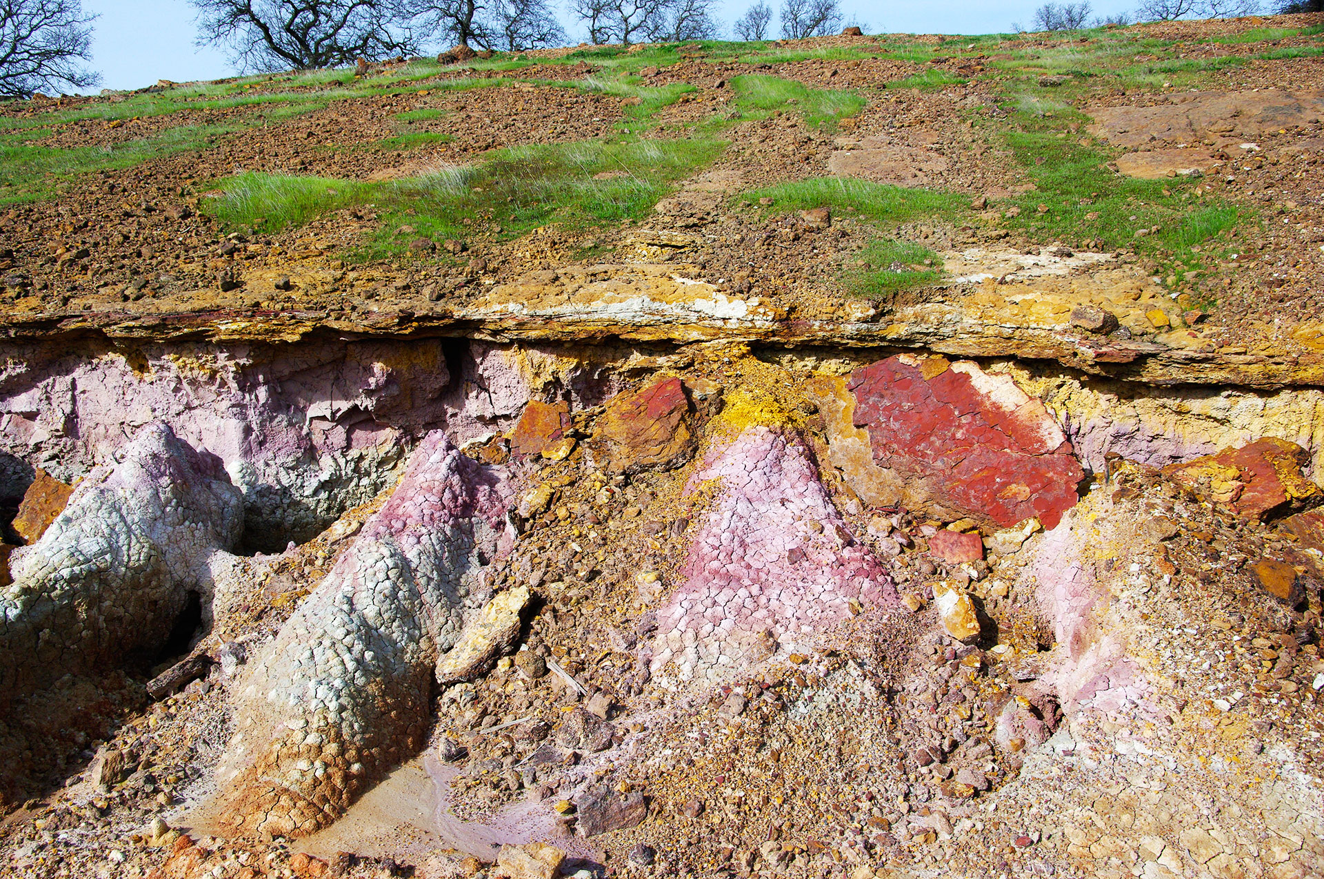 Eocene Ione Formation (laterite- paleosol) formed under tropical- subtropical conditions in Central California 55 million years ago