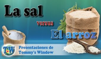 La sal vs el arroz