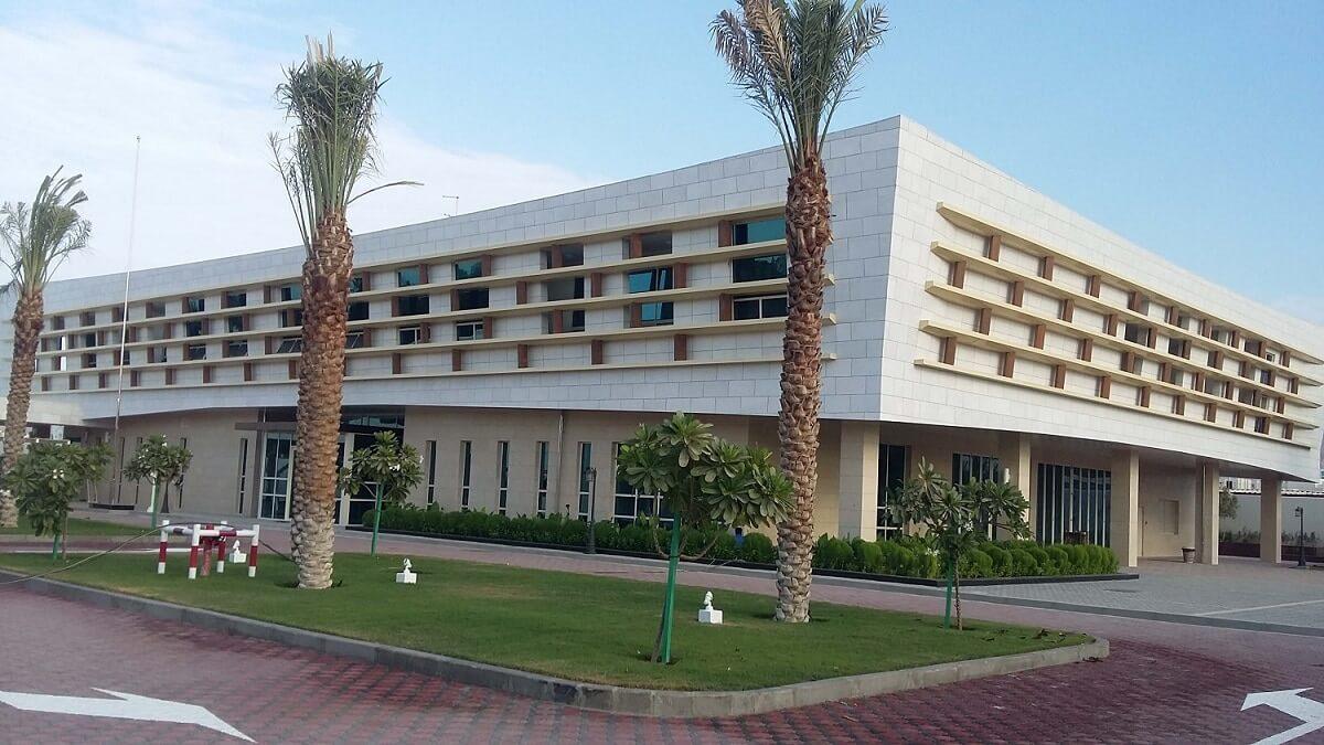 Government-Institute