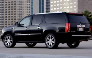 back-escalade-picture
