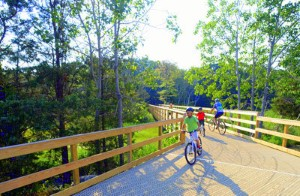 Image of biking trail with family riding bikes