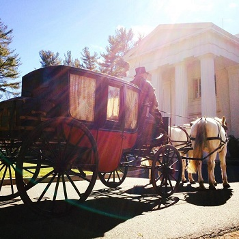 Horse-Carriage-Ride-In-CT-Image