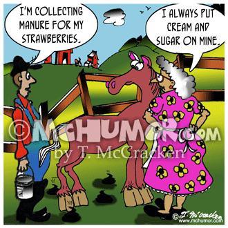 Horse Cartoon 2838