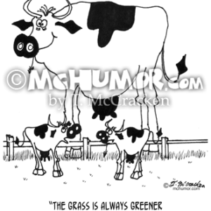 3372 Cow Cartoon