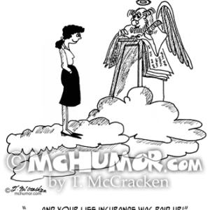9527 Insurance Cartoon 1