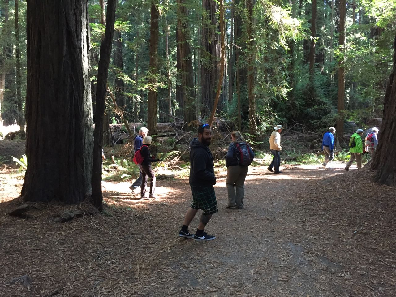 Redwoods 2017 10 01 11 Of 244