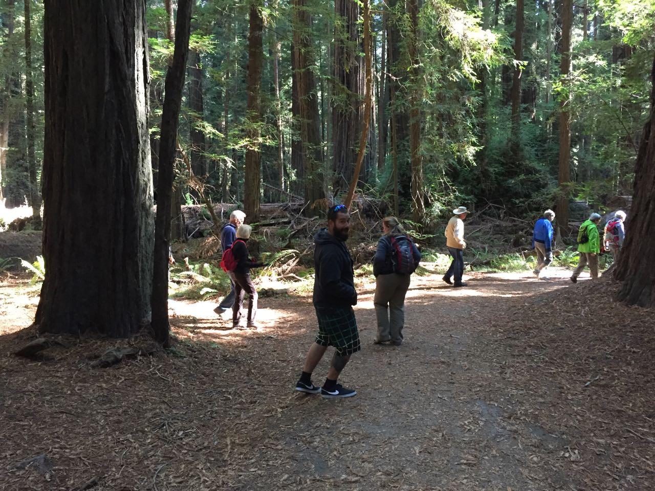 Redwoods 2017 10 01 11 Of 244