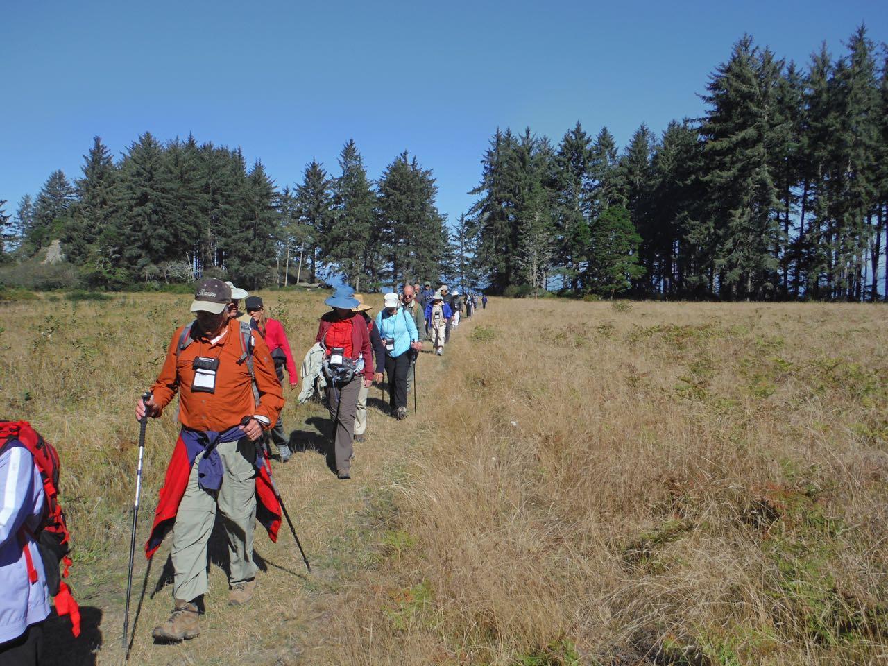 Redwoods 2017 10 01 115 Of 244