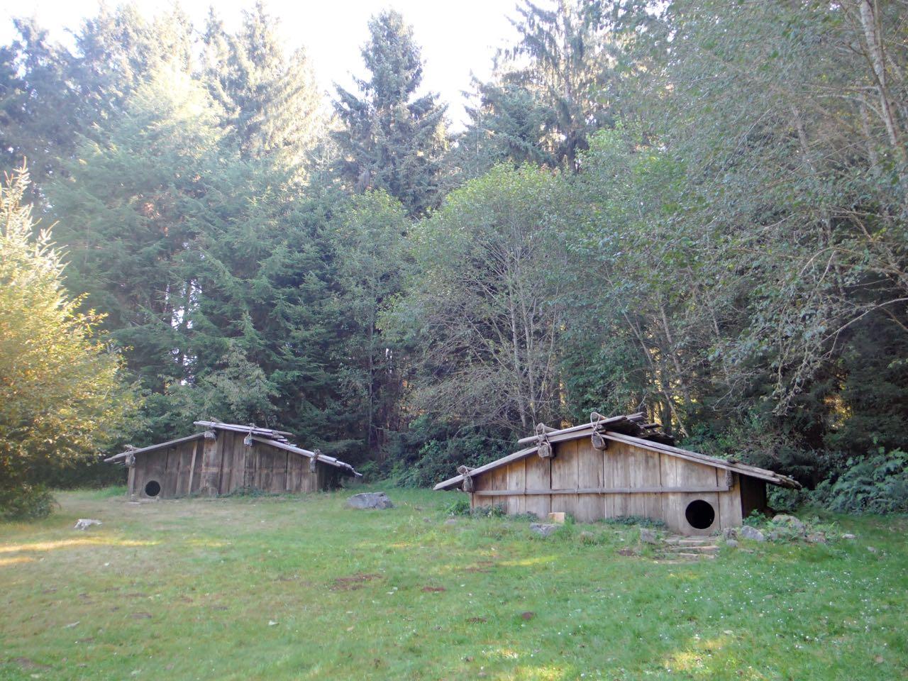 Redwoods 2017 10 01 116 Of 244
