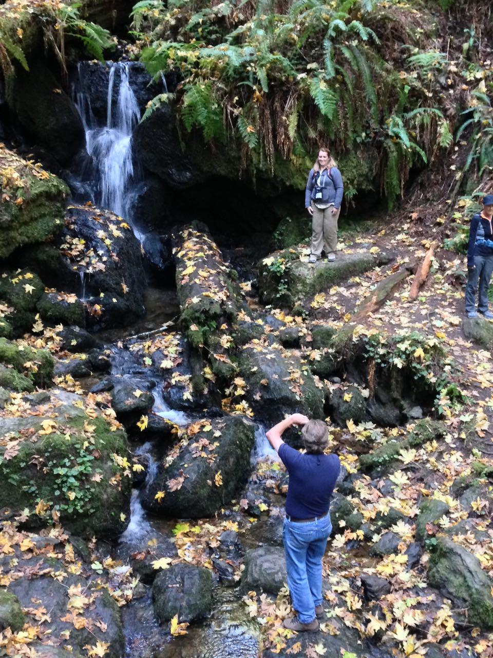 Redwoods 2017 10 01 190 Of 244