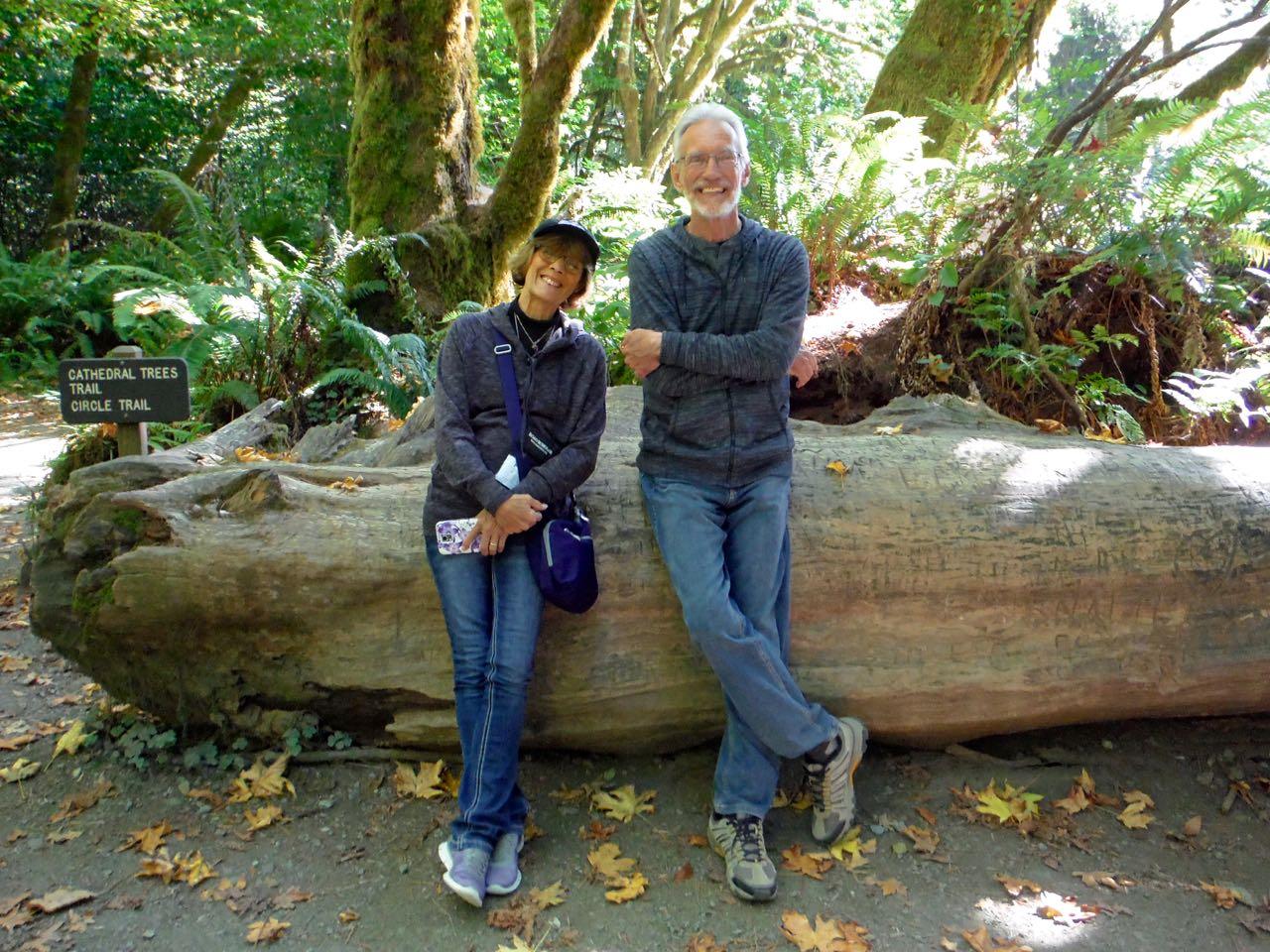 Redwoods 2017 10 01 228 Of 244